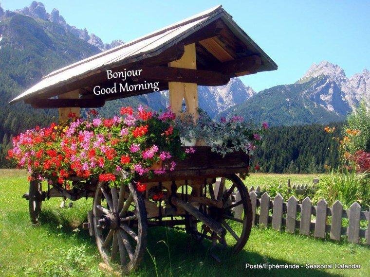 bonjour mes amis(e)s.. je vous souhaite un excellent appétit .. et un agréable après midi de samedi, beau soleil et vent , rafraîchissement de la température et c'est tant mieux !!!!!  .. bisous Josie