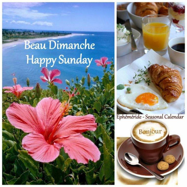 bonjour mes amis(e)s.. je vous souhaite un excellent appétit .. et un agréable après midi de dimanche, sous un beau soleil d'été .. bisous Josie