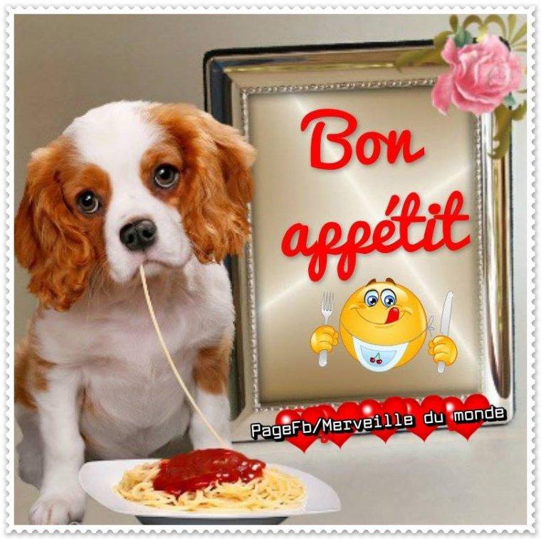 bonjour mes amis(e)s.. je vous souhaite un très bon appétit .. et un agréable après midi de jeudi, ici beau soleil et vent .. bisous Josie