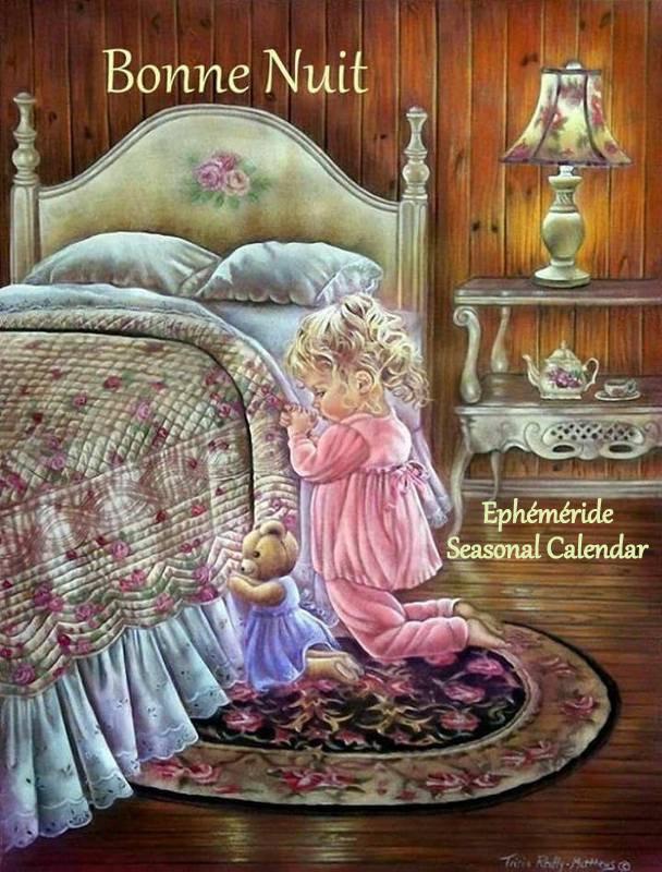 Bonsoir à tous mes amis(es) .. je vous souhaite une bonne soirée .. une douce et tendre nuit .. bisous Josie