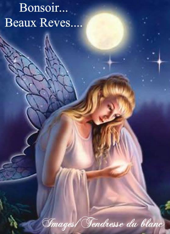 bonsoir à tous mes amis(es) .. je vous souhaite une belle soirée, et une nuit bercée de rêves étoilés.. bisous Josie