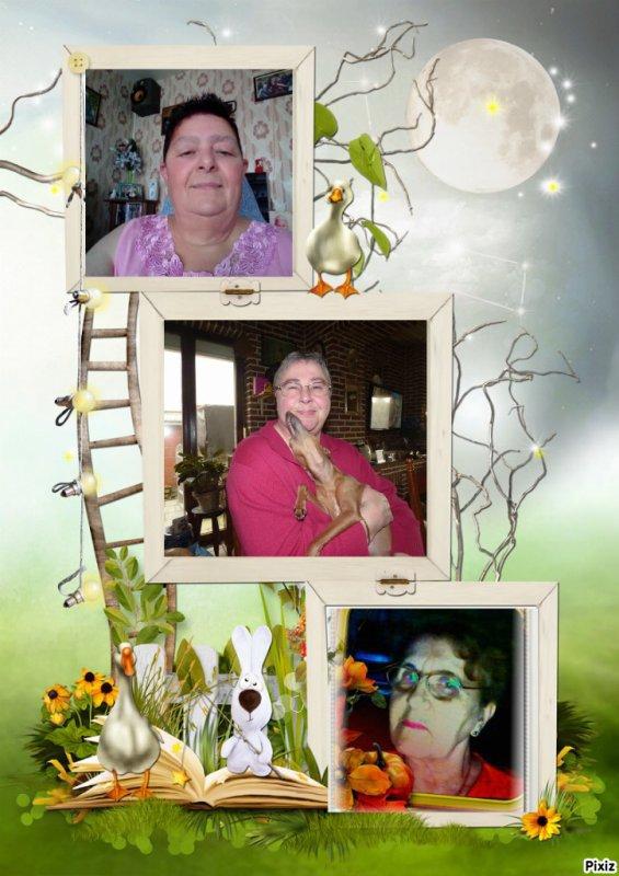 Cadeaux reçus de mes amie  Capucine _ Loulou _ .... Merci bisous Josie