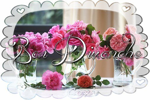 bonjour à tous mes amis(es) ... je vous souhaite une bonne journée du 1er dimanche d'Automne  ... bisous Josie