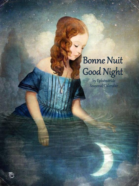 bonsoir à tous mes amis(es) .. je vous souhaite une belle soirée, et une nuit bercée de rêves étoilés .. bisous Josie