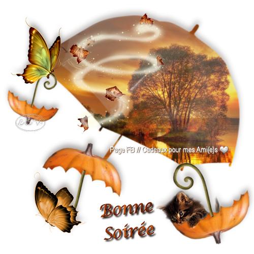 bonsoir à tous mes amis(es) .. je vous souhaite une très bonne soirée, une nuit douce et tendre .. bisous Josie
