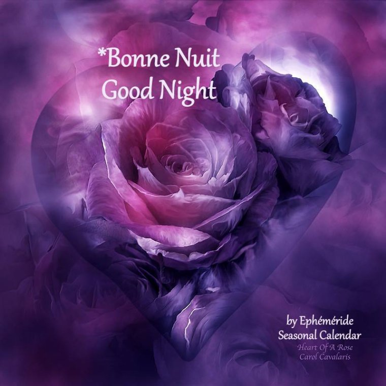 bonsoir à tous mes amis(es) .. je vous souhaite une bonne soirée, et une nuit douce et apaisante .. bisous Josie