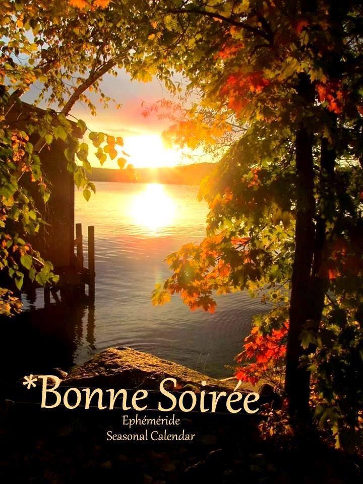 bonsoir à tous mes amis(es) .. je vous souhaite une agréable soirée, une nuit douce et tendre .. bisous Josie