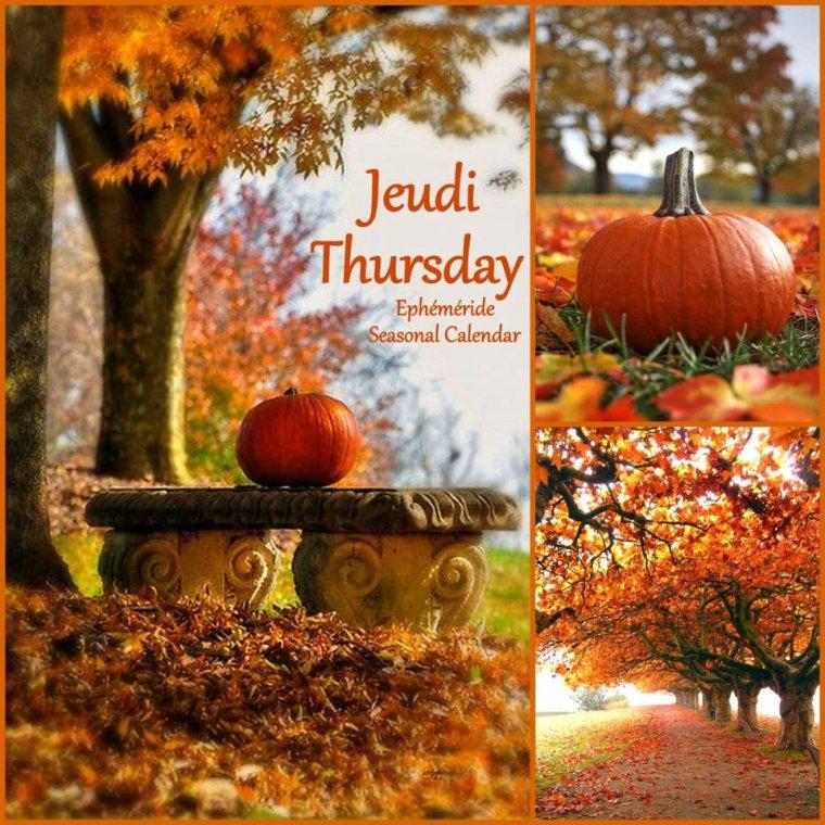 bonjour mes amis(es) .. je vous souhaite un excellent appétit, et un bel après midi de jeudi .. ici beau soleil d'automne .. bisous Josie