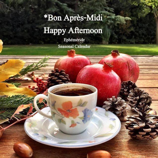 bonjour mes amis(es) .. je vous souhaite un très bon appétit, et un joyeux après midi de mercredi .. ici toujours du beau temps ensoleillé .. bisous Josie