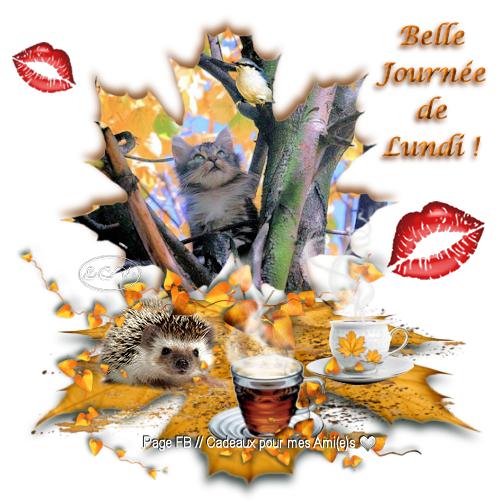 bonjour à tous mes amis(es) ... je vous souhaite une bonne journée de lundi, et un excellent début de semaine ... bisous Josie