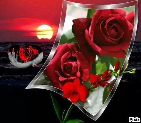 ..... ( SUITE ) CADEAUX A MES AMIS ....... SERVEZ VOUS SI VOUS AIMEZ .......