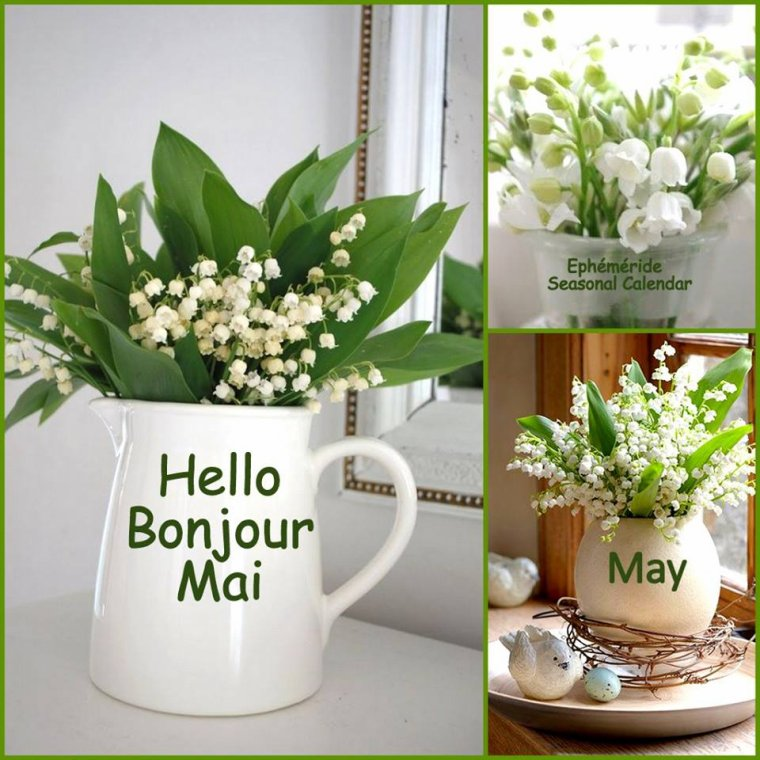 bonjour mes amis(es) .. je vous souhaite un excellent appétit, et un bon après midi du mardi 1er Mai, ici avec la pluie !!!!! .. bisous Josie