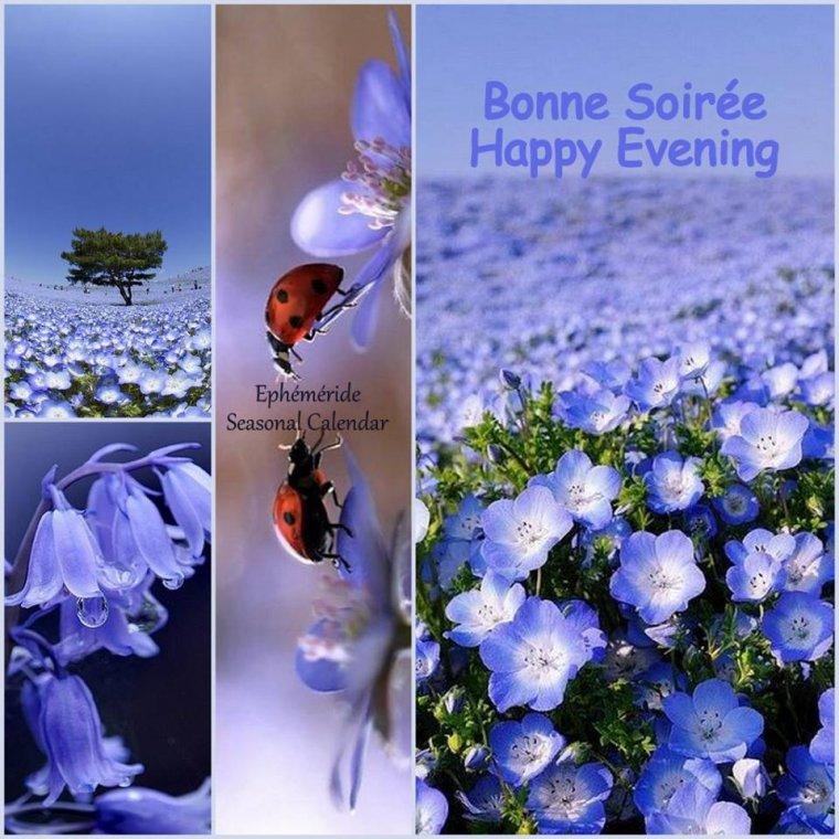 Bonsoir mes amis(es), je vous souhaite une très bonne soirée, une douce et tendre nuit ... bisous Josie