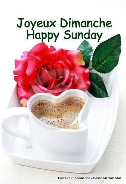 Bonjour mes amis(es), je vous souhaite une belle journée de dimanche ... Gros bisous Josie