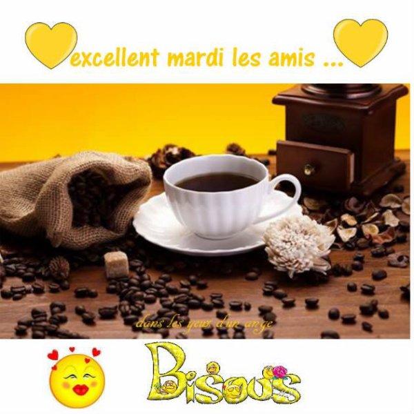 Bonjour mes amis(es) je vous souhaite une bonne journée de mardi, ici toujours de la pluie,,,,, Gros bisous Josie