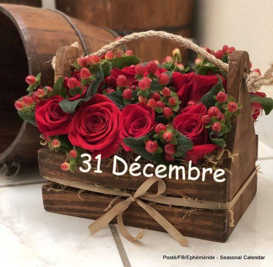 Bonjour mes amis(es) bon lundi le dernier de l'année et excellente 1ere semaine de la nouvelle année, ici soleil et vent froid ... Gros bisous Josie