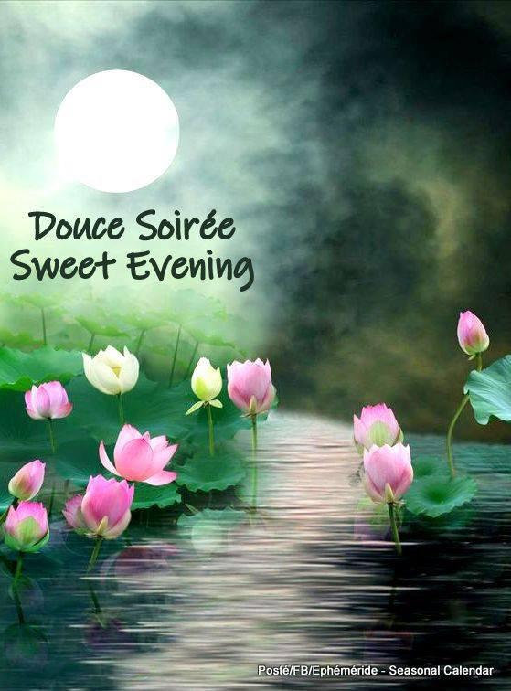 Bonsoir mes amis(es) je souhaite à tous une excellente soirée et une nuit paisible ... Gros bisous Josie