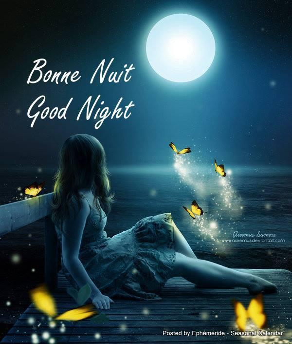 Bonsoir mes amis(es) je souhaite à tous une excellente soirée et une douce nuit étoilée  ... Gros bisous Josie