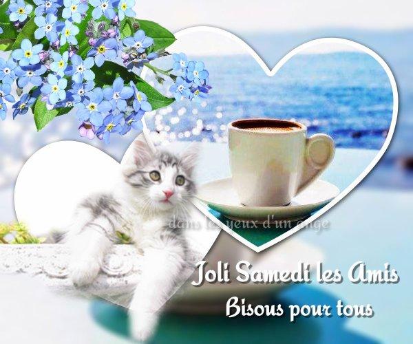 Bonjour mes amis(es) bon samedi à tous, ici avec un beau soleil d'été ... Gros bisous Josie