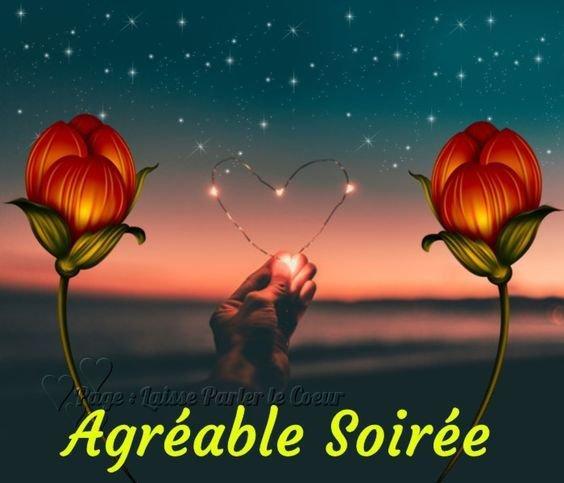 Bonsoir mes amis(es) bonne soirée et douce nuit à tous ... Gros bisous Josie