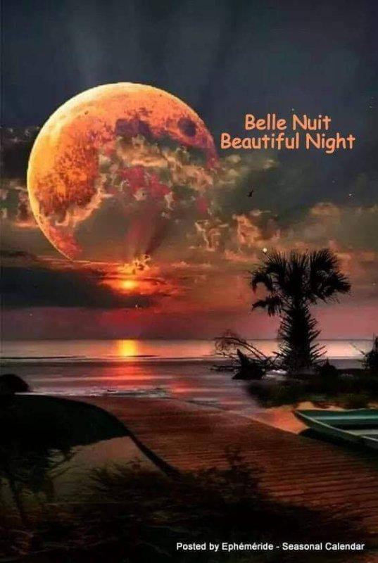 Bonsoir à tous mes amis(es) bonne soirée et une douce nuit étoilée ... Gros bisous Josie