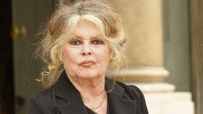 600¤ de récompense pour retrouver le chat de Brigitte Bardot