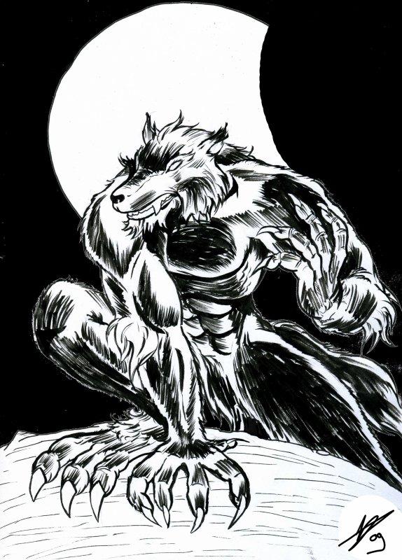 Dessin 3 loup garou blog de les dessins du corbeau - Dessin loup garou ...