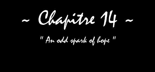 A Beautiful Disaster - Chapitre XIV