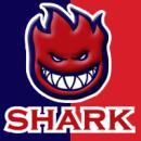 Photo de ultra-shark