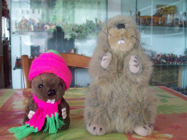 Moi et maman marmotte