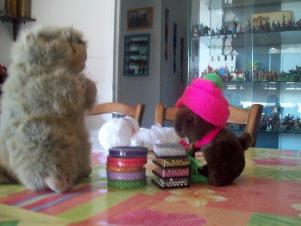 Cadeau de maman marmotte