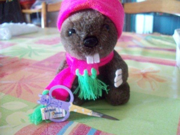 Echange avec ma maman marmotte