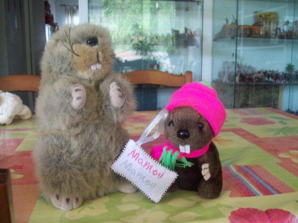 Cadeau pour maman marmotte