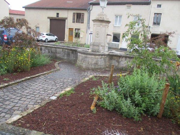 Liverdun : Le village fleuri .