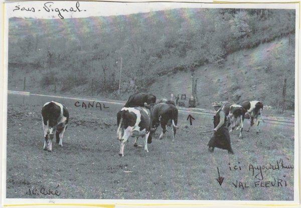 Liverdun : Bourg agricole. ( I )