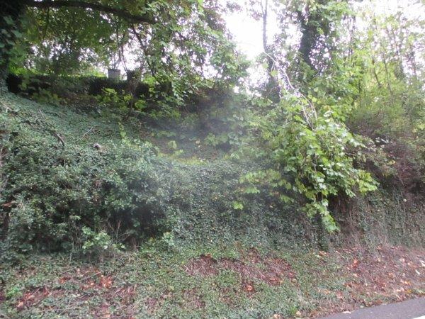Liverdun : chutes d'arbres .
