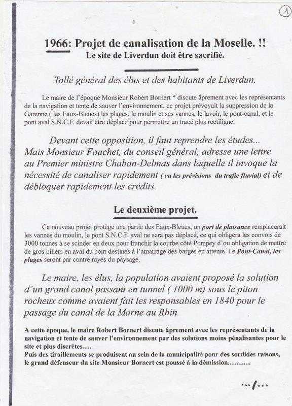 Liverdun : Massacre d'un site
