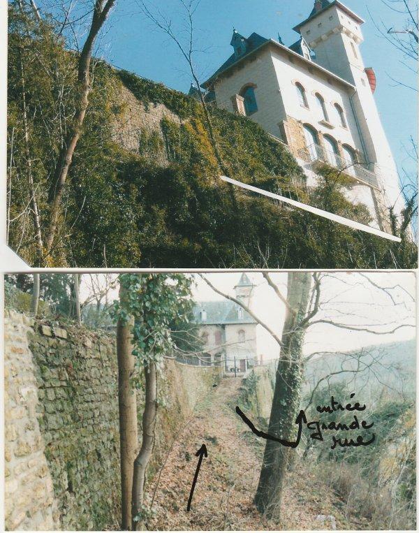 Liverdun : Château Corbin .