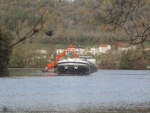 Les épaves dans la Moselle.