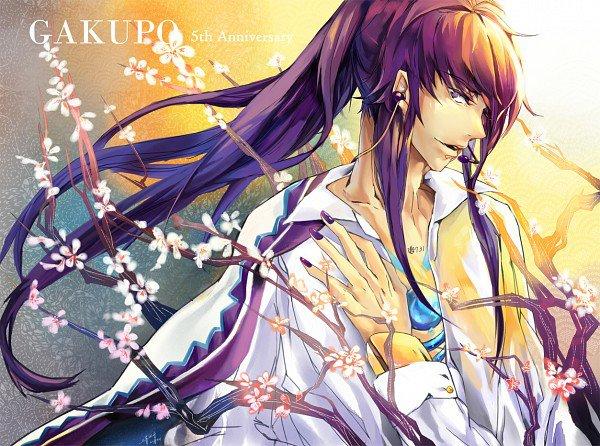 Kamui Gakupo - Discord