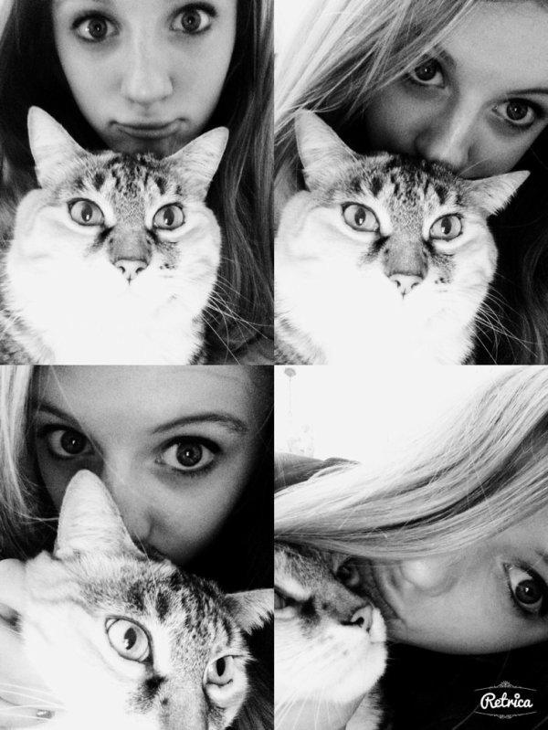 Petit passage de mon chat sur skyrock. ❤️