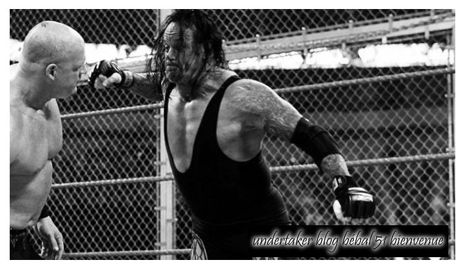 HELL in a CELL & UNDERTAKER