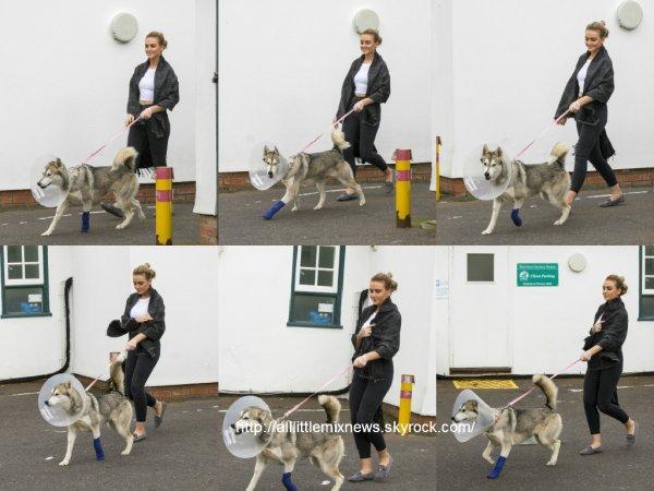 14 avril 2015 : Perrie a été vue alors qu'elle quittait le vétérinaire avec son chien