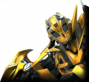 Photo de bumblebee25