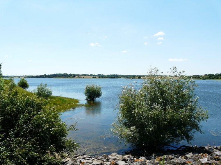 Le Cébron est une rivière française qui coule dans le département des Deux-Sèvres. C'est un affluent du Thouet en rive gauche, donc un sous-affluent de la Loire. Wikipédia Longueur : 29 km Embouchure : Le Thouet Pays : France Bassin : 162 km2 Bassin collecteur : la Loire