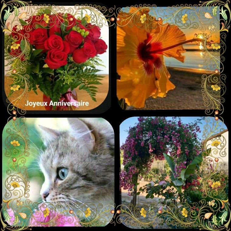 Joyeux anniversaire à toi mon amie Marie Claire bisous