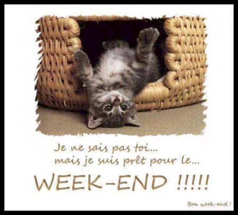 Bonjour à vous  tous, bon week-end à vous aussi