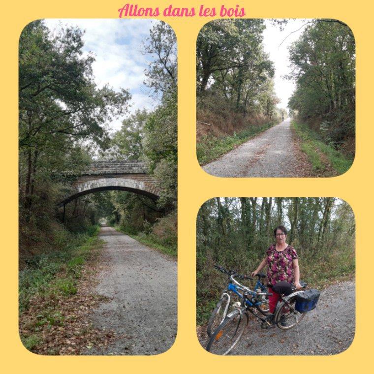 On à ressortis les  vélos après un repos d environ 5 ans ,10 km un peu beaucoup  pour une première  balade