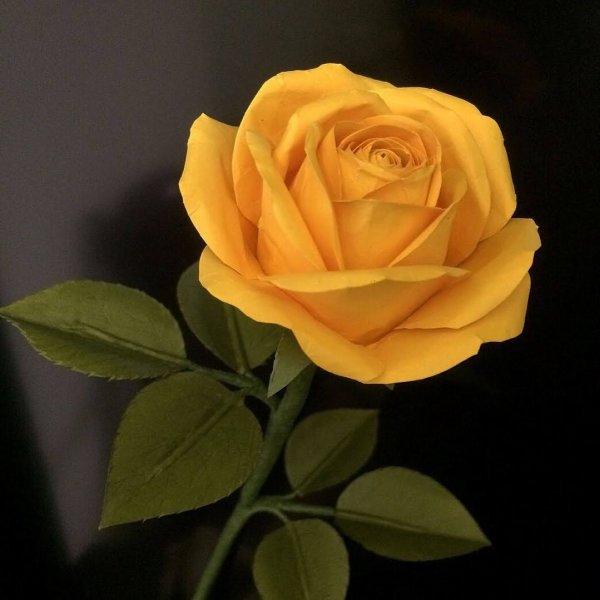Merci Audeline pour tes magnifiques roses , cadeau pour toi en retour du tient