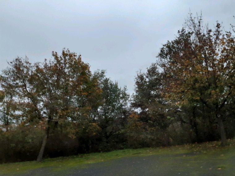 Bonsoir, photos d 'aujourd'hui  faite par un mauvais temps